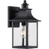 This item: Chancellor Mystic Black One-Light Outdoor Wall Sconce