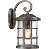This item: Crusade Palladian Bronze 10-Inch One-Light Outdoor Wall Lantern