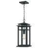 This item: Granby Earth Black One-Light Outdoor Pendant