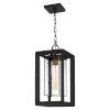 This item: Infinger Earth Black One-Light Outdoor Pendant