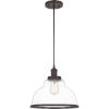 This item: Leo Old Bronze 12-Inch One-Light Pendant with Clear Glass