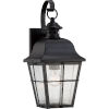 This item: Millhouse Mystic Black One Light Outdoor Wall Fixture