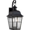 This item: Millhouse Mystic Black Two Light Outdoor Wall Fixture