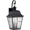 This item: Millhouse Mystic Black Three Light Outdoor Wall Fixture