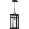 This item: Moira Earth Black One-Light Outdoor Pendant