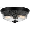 This item: Earth Black Two-Light 13-Inch Flush Mount