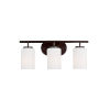 This item: Oslo Burnt Sienna Three-Light Bath Vanity with Cased Opal Etched Shade