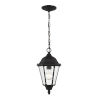 This item: Bakersville Black One-Light Outdoor Pendant with Satin Etched Shade Energy Star