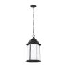 This item: Sevier Black One-Light Outdoor Pendant with Satin Etched Shade