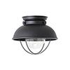 This item: Sebring Black 11-Inch LED Outdoor Flush Mount