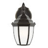 This item: Bakersville Heirloom Bronze One-Light Outdoor Wall Sconce with Satin Etched Shade