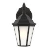 This item: Bakersville Black Seven-Inch One-Light Outdoor Wall Sconce with Satin Etched Shade