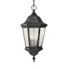 This item: Martinsville Black Three-Light Outdoor Pendant with Clear Seeded Shade