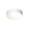 This item: Ilios Satin White 14-Inch LED Flush Mount