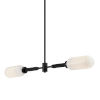 This item: Annex Anodized Black Two-Light Pendant
