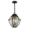 This item: Bunker Hill Vintage Bronze Three-Light Outdoor Pendant with Clear Seeded Glass