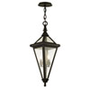 This item: Geneva Vintage Bronze Two-Light Outdoor Pendant with Clear Seeded Glass