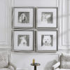 This item: Modern Dogs Taupe and White Framed Prints, Set of 4