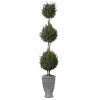 This item: Cypress Triple Aged Gray Trees-Greenery