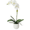 This item: Cami Orchid White and Green 14-Inch Orchid