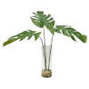 This item: Ibero Clear and Green 30-Inch Split Leaf Palm