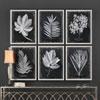 This item: Foliage Framed Prints, Set of Six