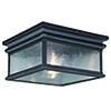 This item: Cambridge Oil Rubbed Bronze Two-Light Outdoor Flush Mount