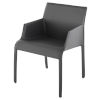 This item: Delphine Dark Gray Dining Chair