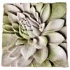 This item: White Moss Dahlia Plaque