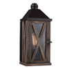 This item: Ednor Oak and Rubbed Bronze One-Light Outdoor Wall Mount