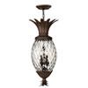 This item: Fleur Copper Bronze Four-Light Outdoor Pendant