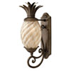 This item: Fleur Pearl Bronze Eight-Inch LED Outdoor Wall Mount with Amber Glass
