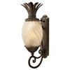 This item: Fleur Pearl Bronze 10-Inch One-Light Outdoor Wall Mount with Amber Glass