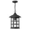 This item: Hilldate Black One-Light Outdoor Pendant