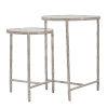 This item: Milo Silver Nesting Table Set