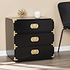 This item: Campaign Black and Brass 24-Inch Accent Chest