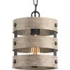 This item: P500022-143: Gulliver Graphite One-Light Mini Pendant