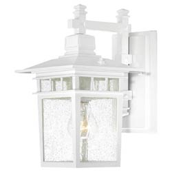 Item Cove Neck White Finish One Light Outdoor Wall Sconce with Clear Seeded Glass