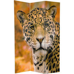 663CAN-LEOPARD_1