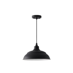 RLM Black One-Light Outdoor Hanging Pendant