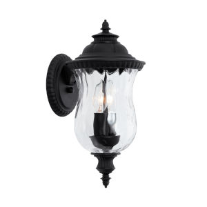 Ashford Black Two-Light Outdoor Wall Mount with Water Glass