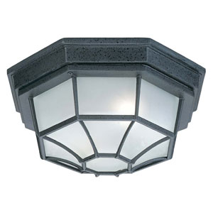 Black 11-Inch Two Light Outdoor Flush Mount
