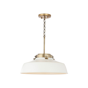 Oakwood Matte White One-Light Pendant