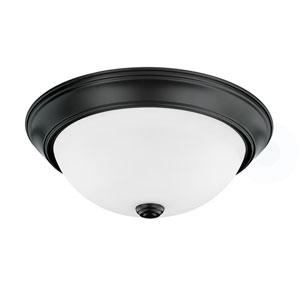 HomePlace Matte Black 13-Inch Two-Light Flush Mount