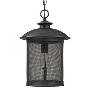 Dylan Old Bronze One-Light Outdoor Hanging Lantern