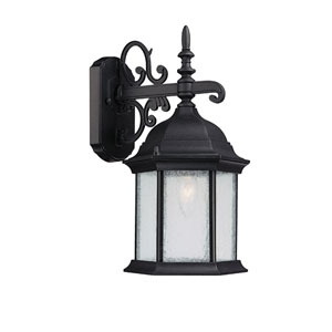 Main Street Black Large One-Light Outdoor Wall Light