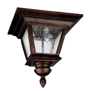 Brookwood  Burnished Bronze Outdoor Flush Mount Ceiling Light