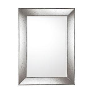Aged Silver Decorative Mirror