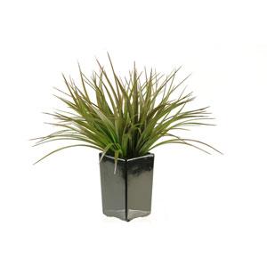 Brown and Green Grass in Square Black Ceramic Planter