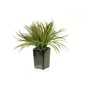 Brown and Green Grass in Tall Square Ceramic Planter